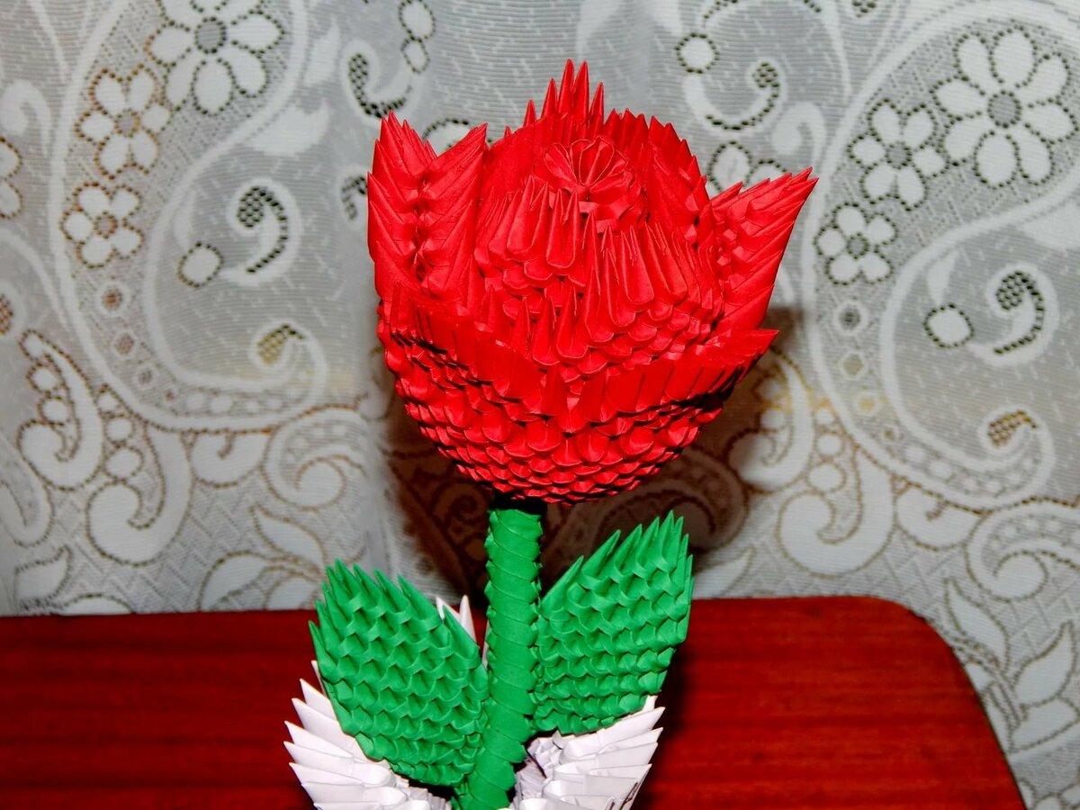 модуль оригами роза красная фото топурия