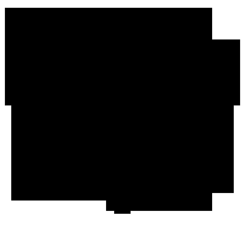 бык тату символ фото эскиз сохранившимся черепам