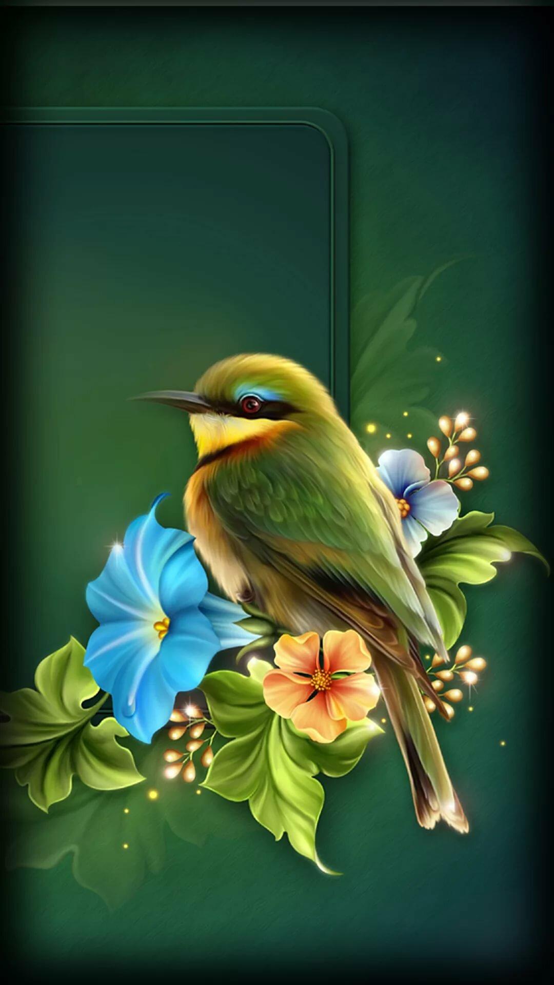 Днем, птички картинки анимашки