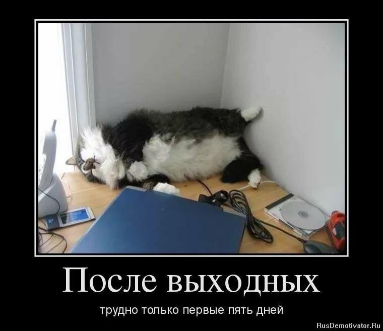Матери, смешные картинки про выходные на работе