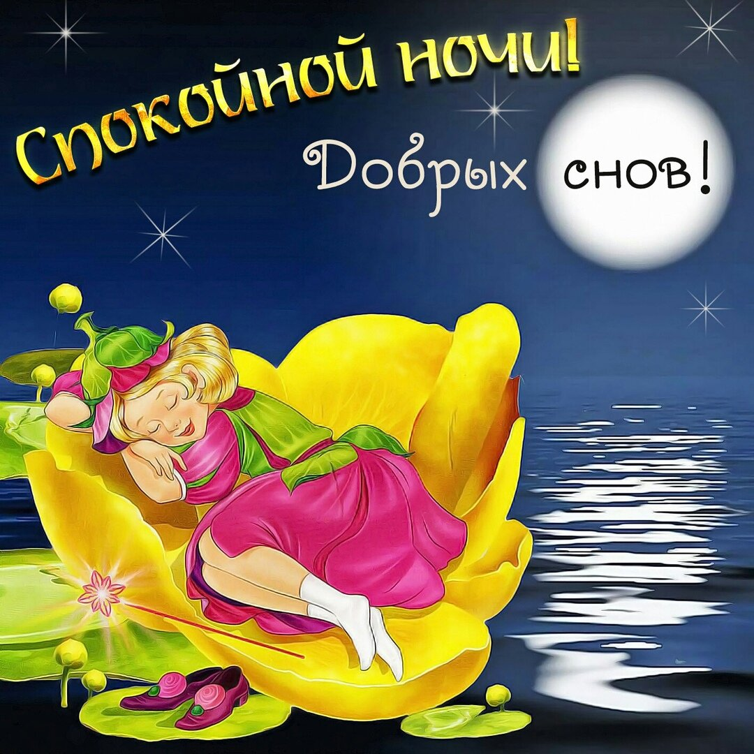 Подарков, открытки сладких снов солнышко