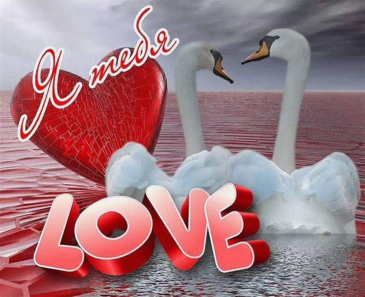 картинки для любимого мужа в признаний любви