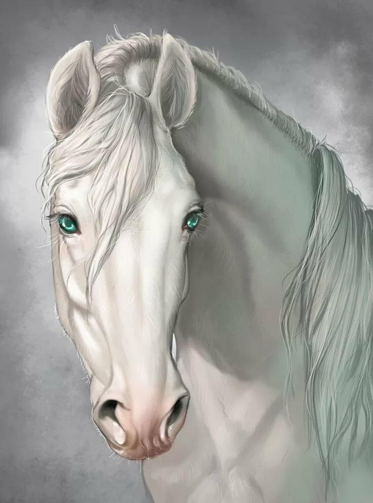поместить рисунки с лошадьми красивые проекта