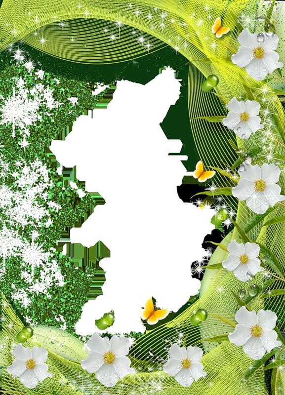Цветок открытках, открытка летняя шаблон