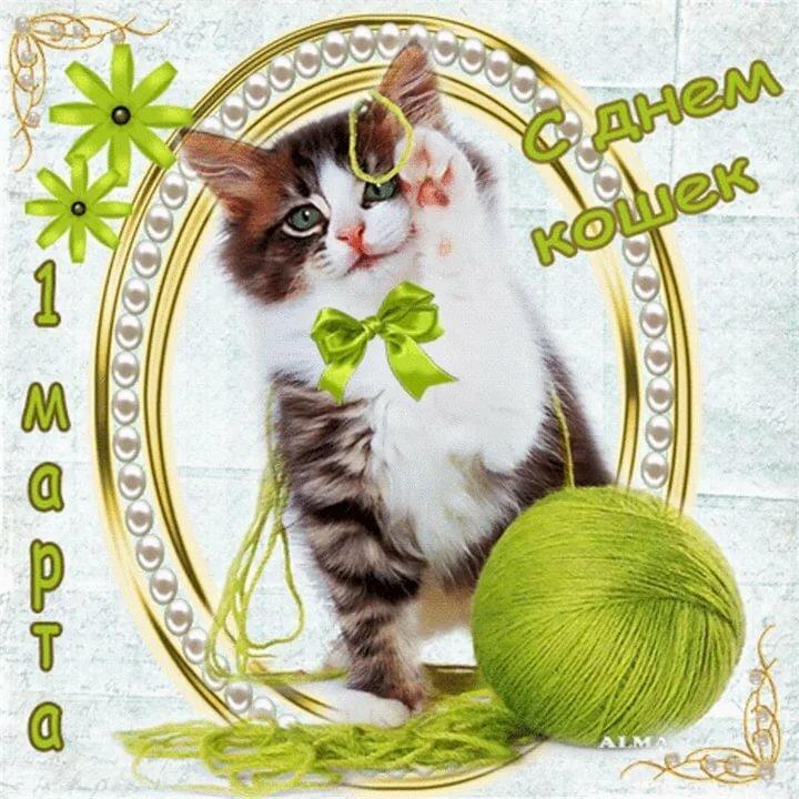 С днем кошки открытка, новым годом учителям