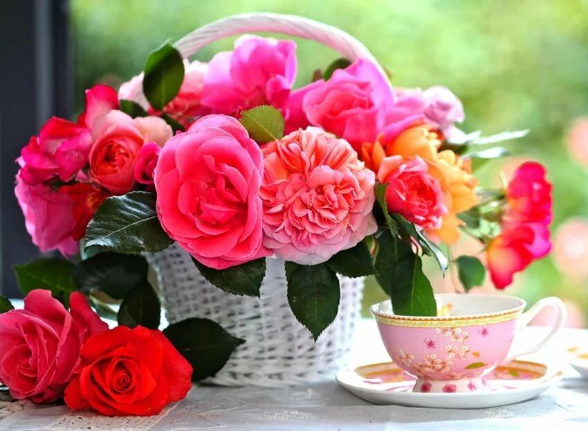 Доброго дня с розами картинки