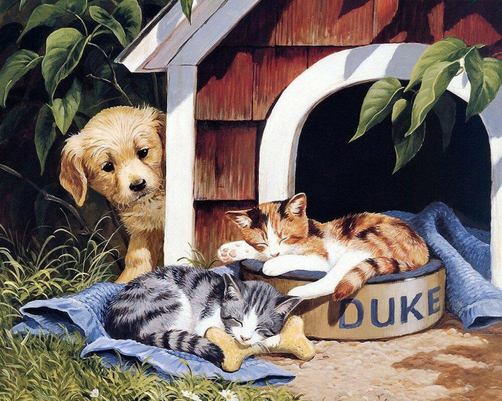 Открытка котенок с щенком