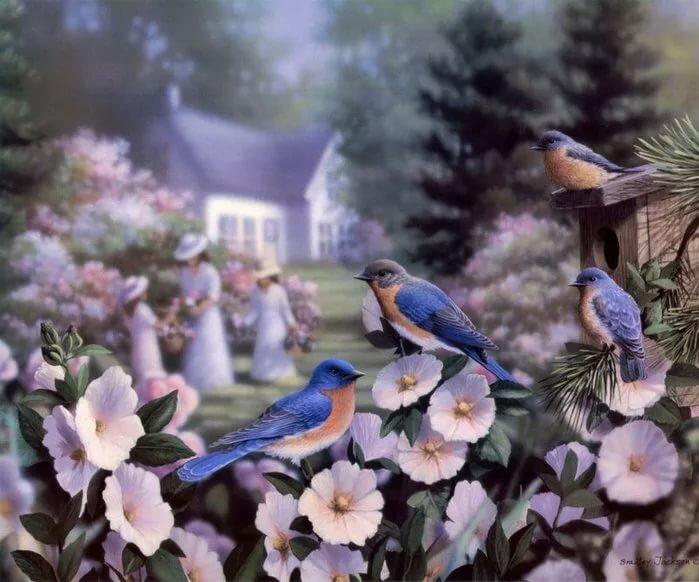 Картинки сада с птицами