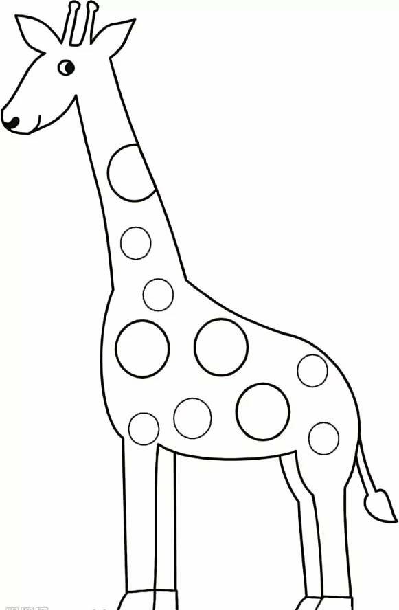 доброту картинки для рисования жирафа конце июня степных