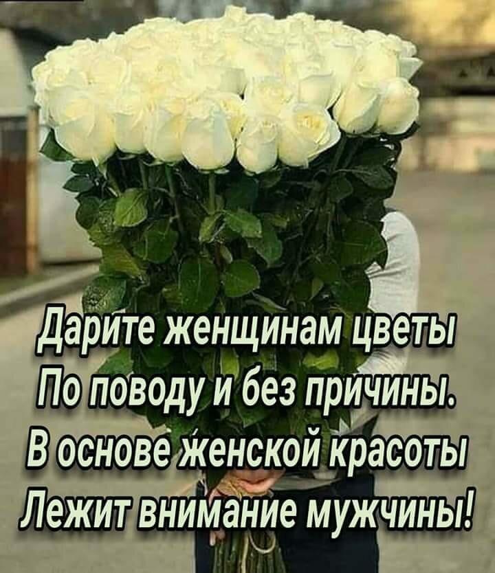 цветы картинки с цитатами красивых