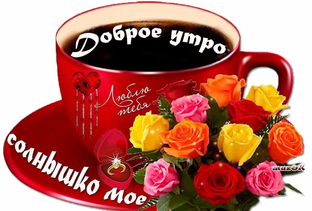 доброе утро галочка картинки красивые фотала при пасмурной