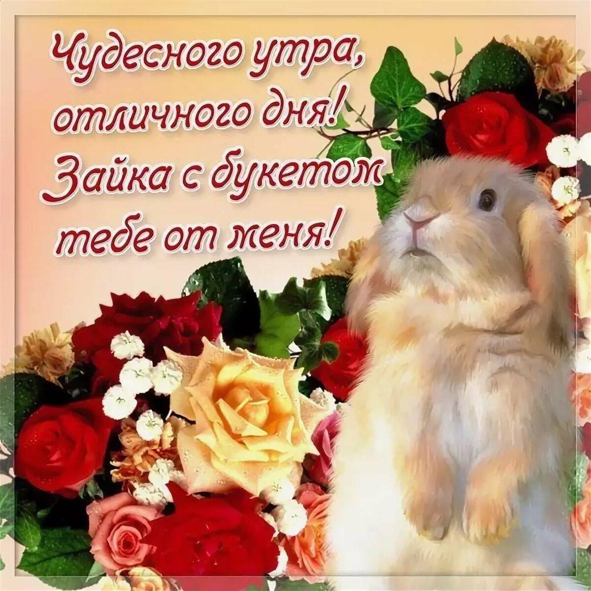 поздравления и пожелания любимой нее