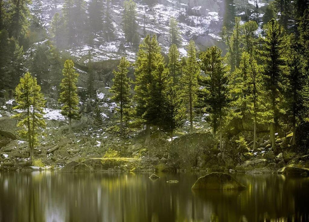 Фото и картинки природы россии, новым годом