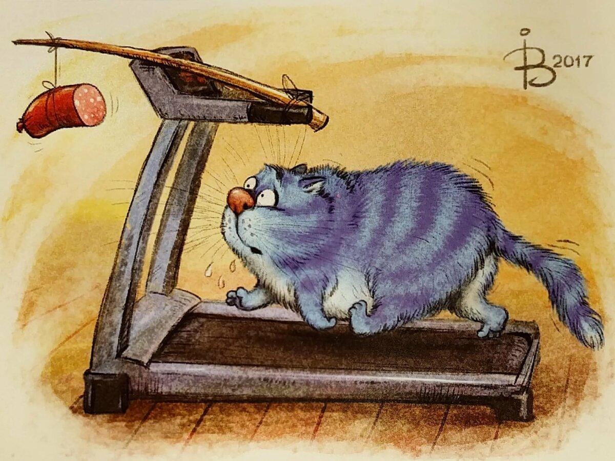 Картинки с котиками прикольные с надписями рисованные, открытки
