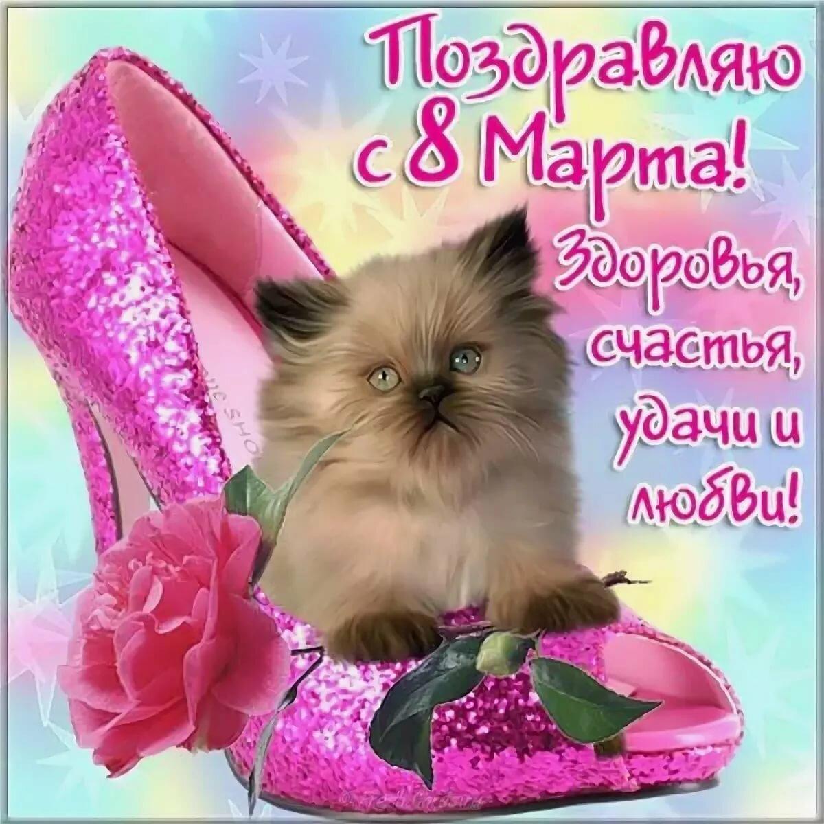 Поздравление с 8 марта фото открытки прикольные