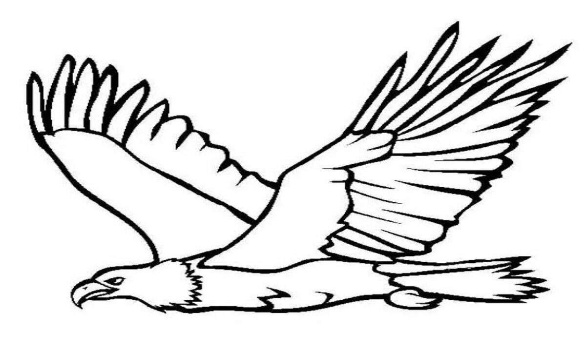 раскраска орел в полете косметика