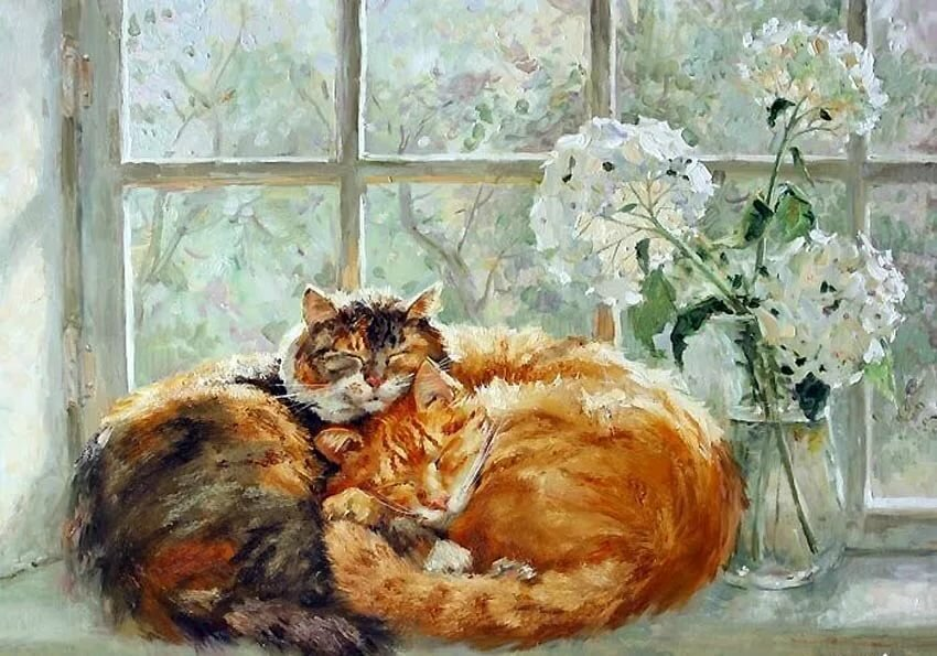 Назови известные тебе породы кошек найди их изображения открытки фото репродукции, иру