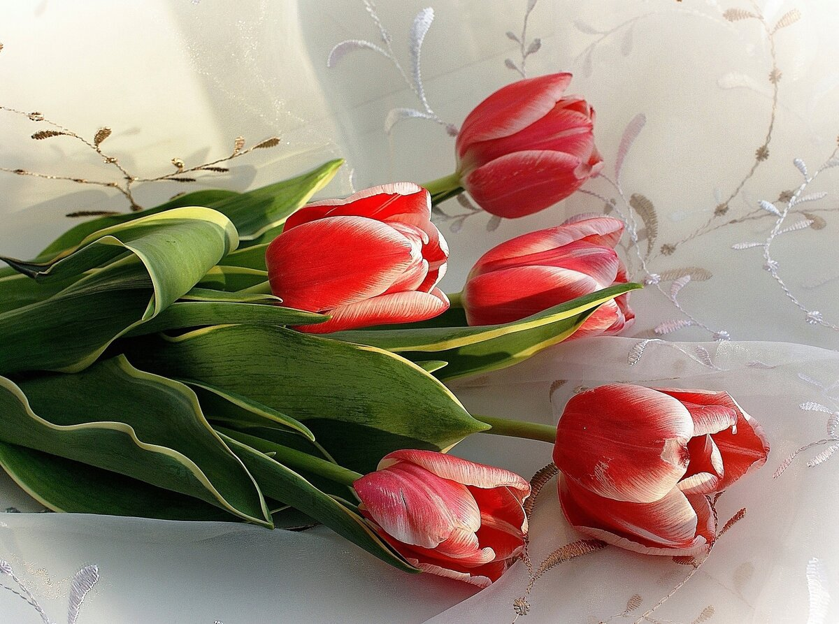 металлические коронки виртуальные открытки тюльпаны результате
