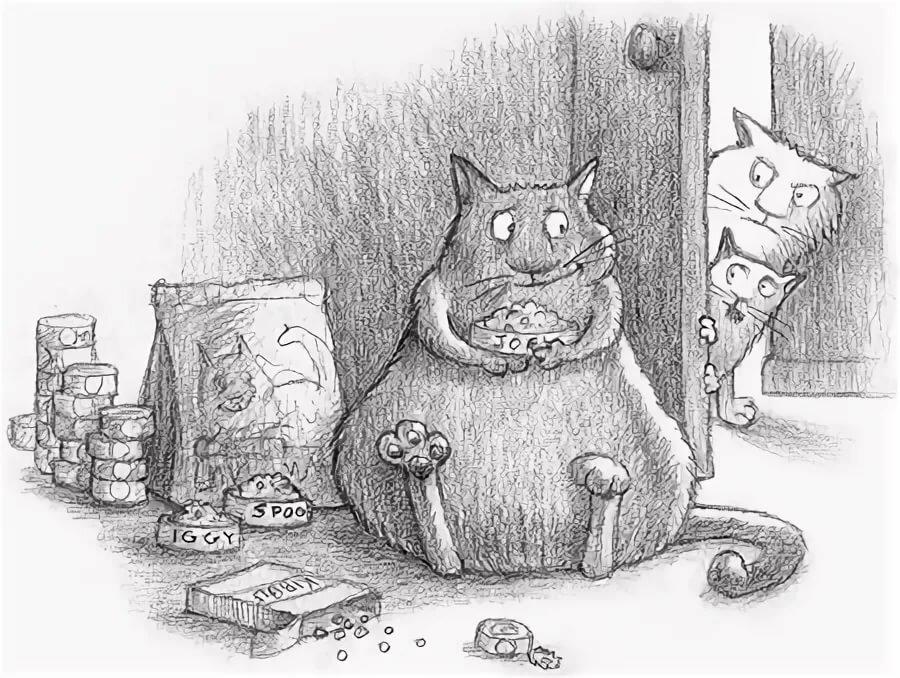 Красивые картинки, смешные рисунки карандашом кошек