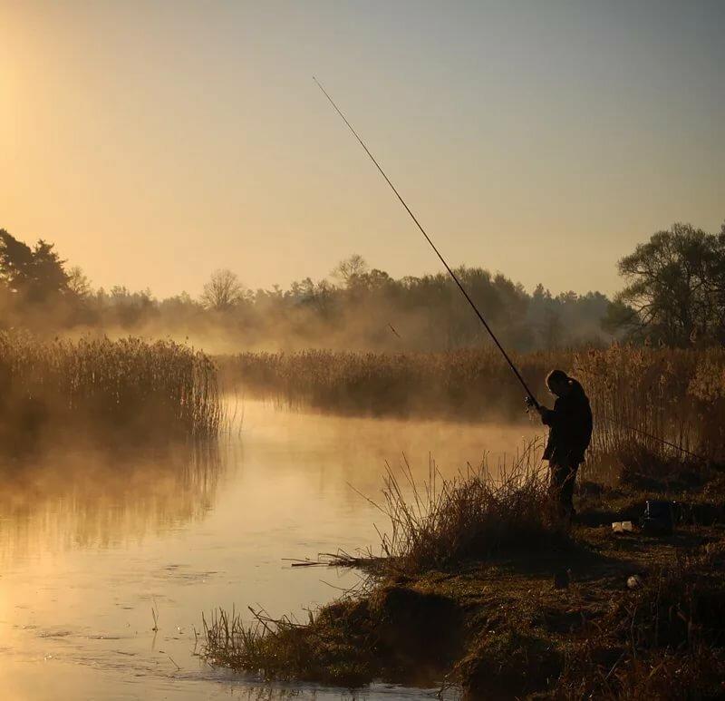 Красивые картинки и фото про рыбалку