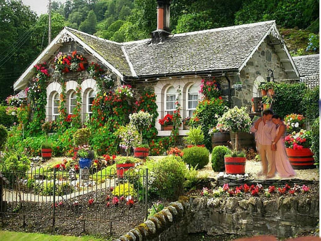 Красота на дом картинки