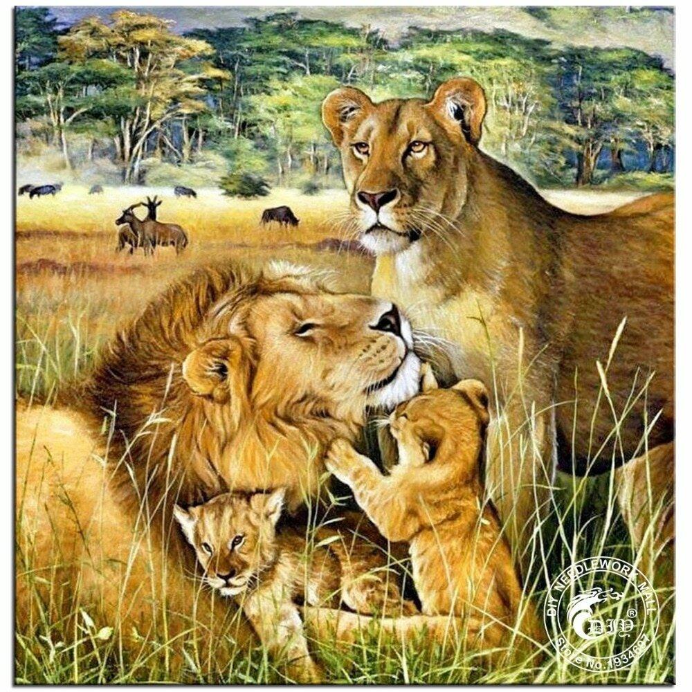 Тест картинка семья львов