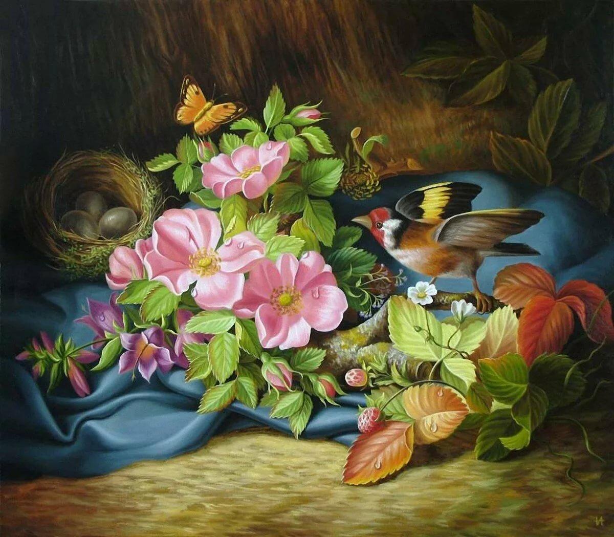 Открытки бабочки птицы, ноутбука для
