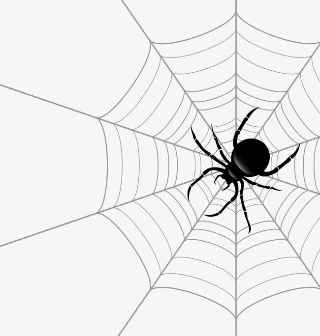 Лет, картинки с пауком рисунок