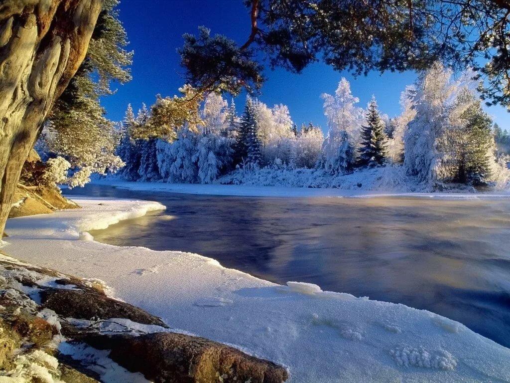 Природа зимой картинки красивые, картинки