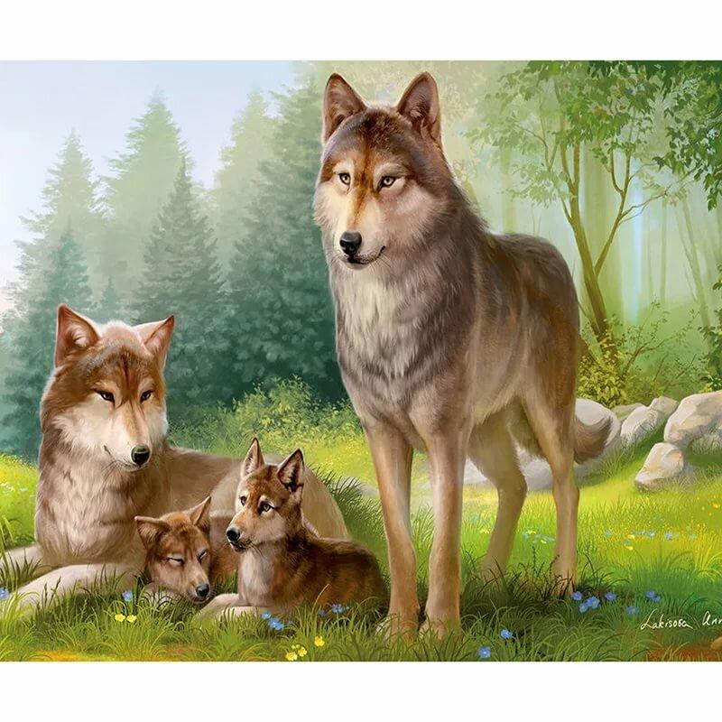 Поздравлениями, картинка волк с волчатами для детей