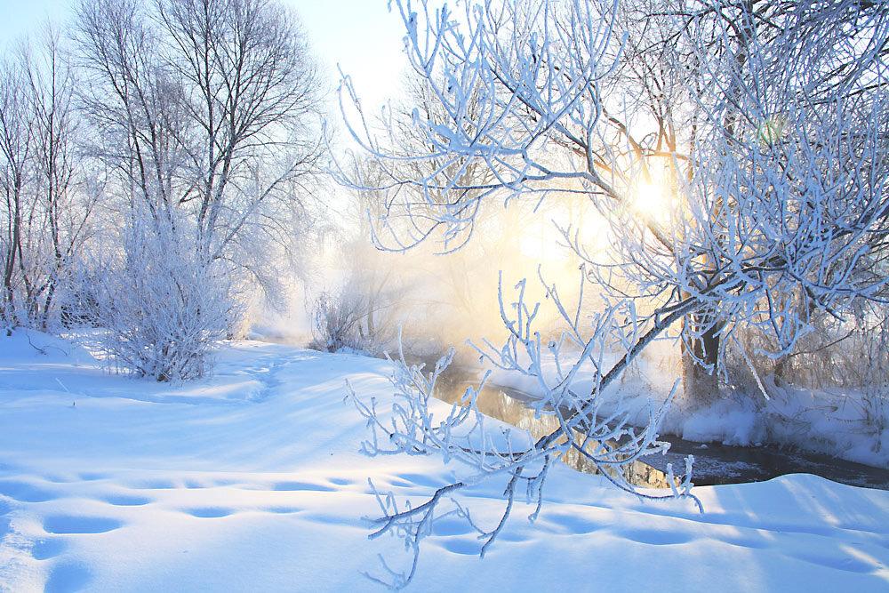 Подписать открытки, зимнего утра картинки