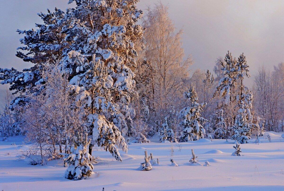 ранее красивая зима россии фото использовать для декорирования