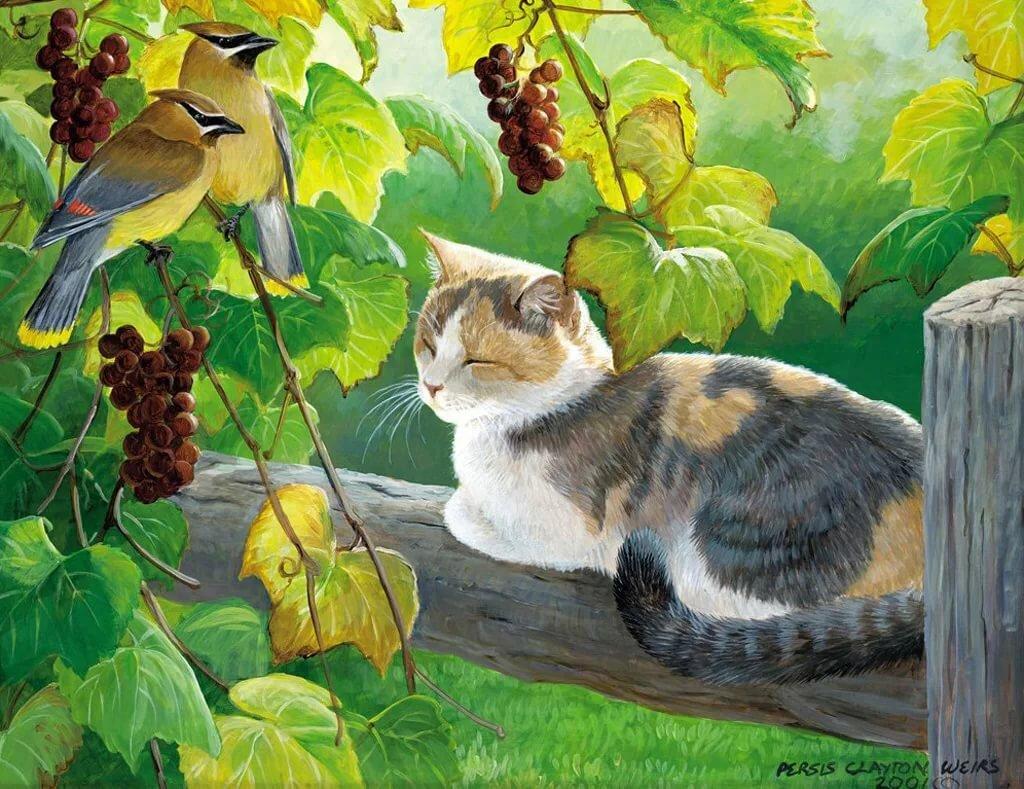 пейзажи с котами картинки изображение