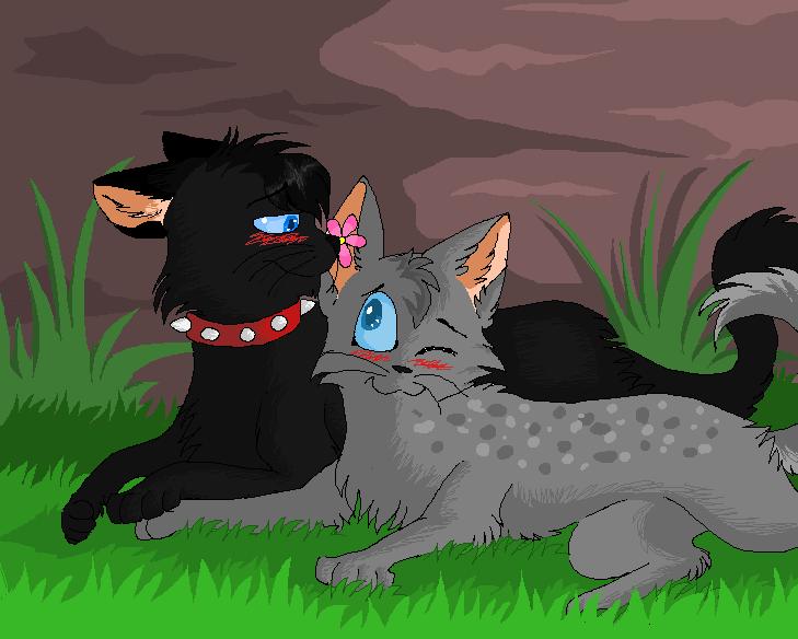 Коты воители картинки кровоцапка и ее котята