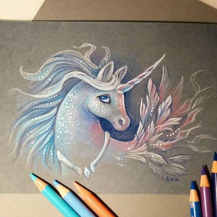 Картинки единорогов для рисования для срисовки разноцветные