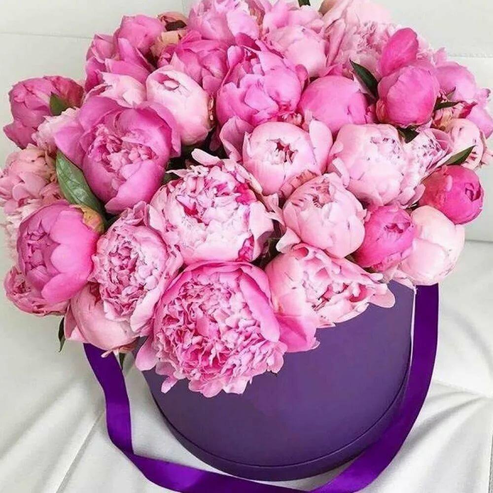 Открытка с розовыми пионами, картинки днем рождения