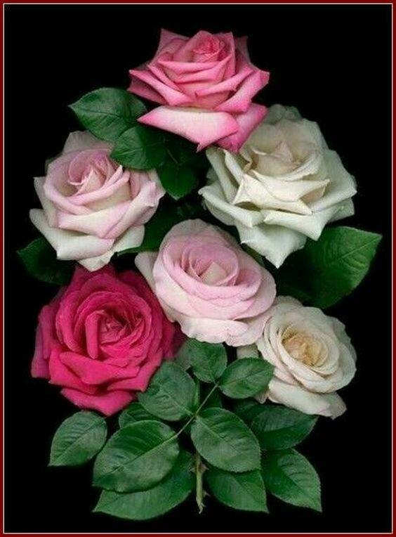 Блестящие открытки с розами на день рождения