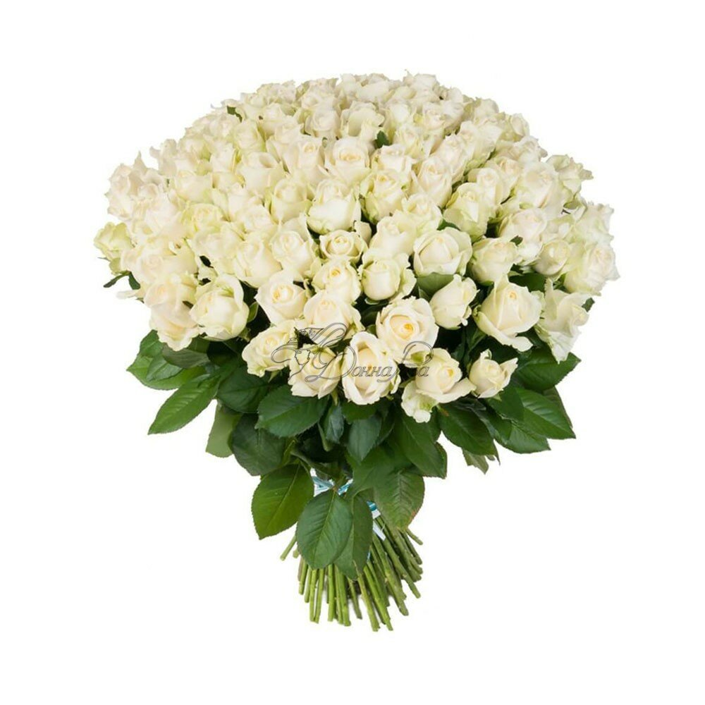 Белыми цветочки в букет с розами, цветов