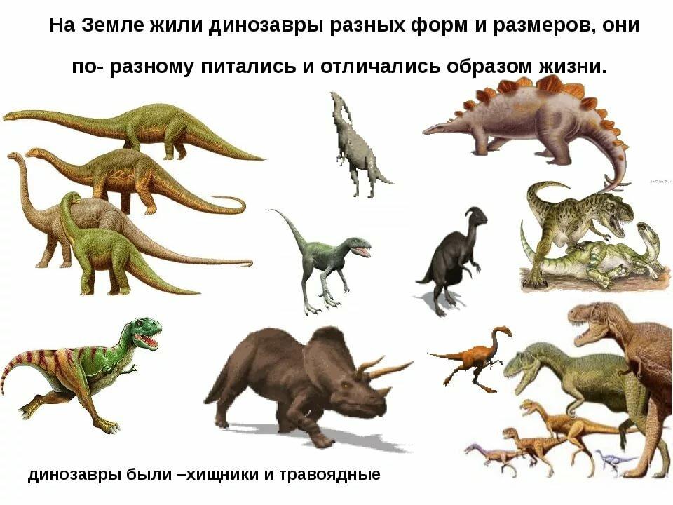 Виды динозавров в картинках, рождественские колядки
