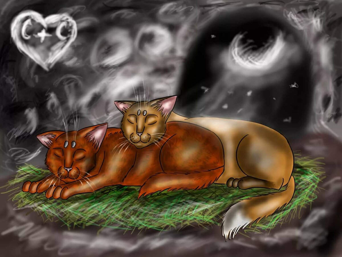 Коты коты воители под взорами целителей слушать на русском