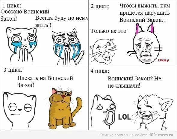 Коты воители смешные картинки с надписями до слез, сделай