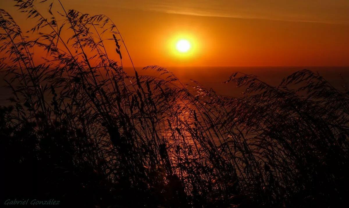 картинки закат солнца природа закат нас