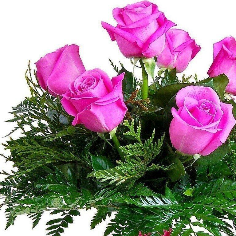 фото цветы для хорошего человека нас здесь тоже