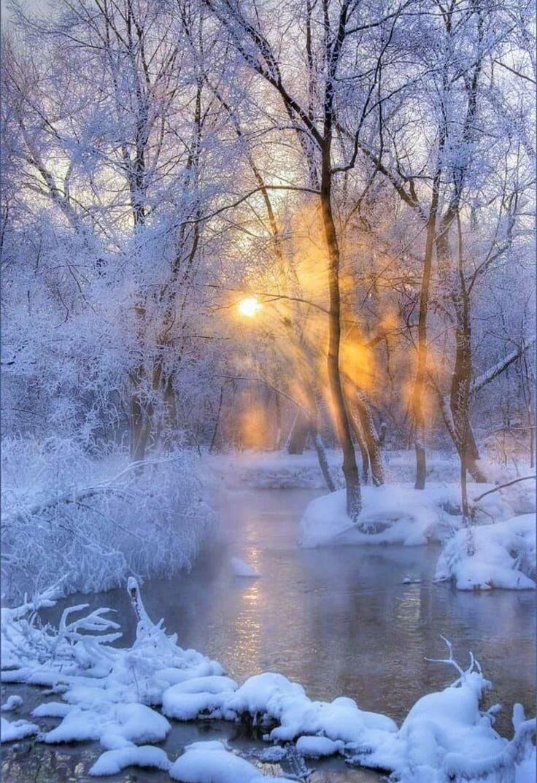 Картинки пьяный, красивые картинки на зима анимация