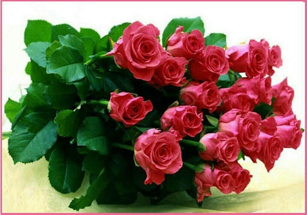 Нежные картинки, открытки розы для ирины