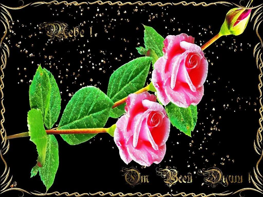 моих анимационные открытки цветы с поздравлением пару слов тегах