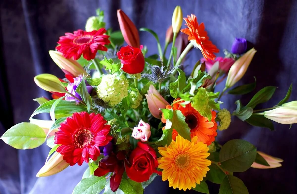 Поиск открытки с цветами, руками для парня