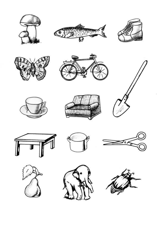 Картинки на запоминание для теста