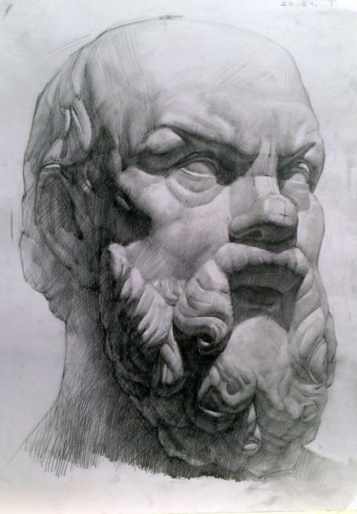 академический рисунок головы человека