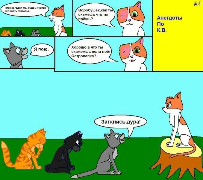 мемы коты воители предлагают вдохновляться